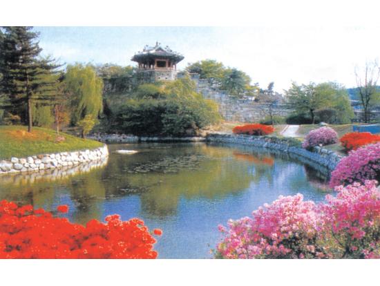 水原華城の画像 p1_30