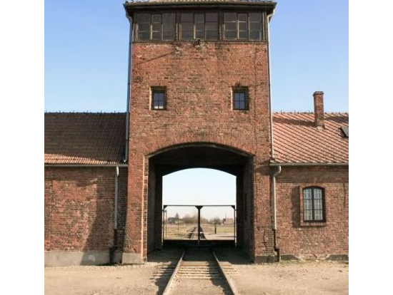 アウシュヴィッツ=ビルケナウ強制収容所の画像 p1_20