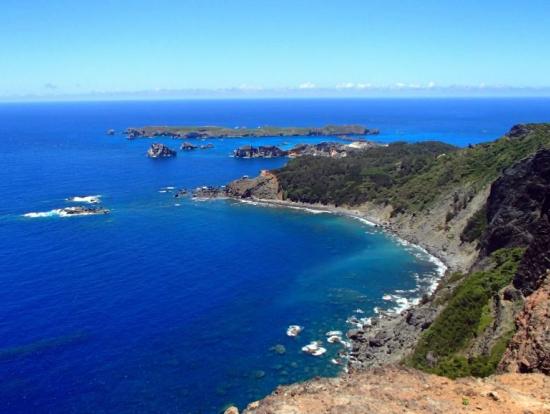 小笠原諸島の画像 p1_26