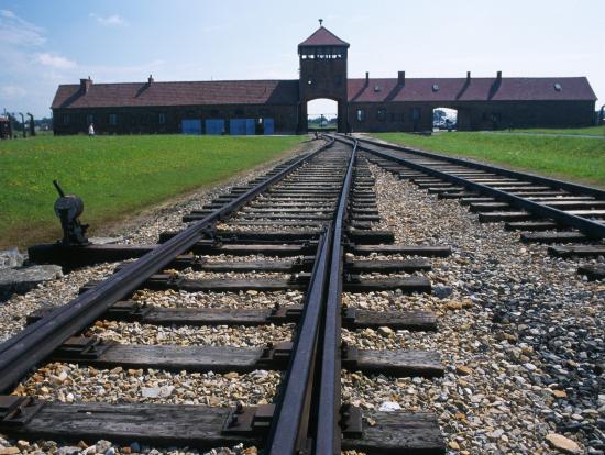 アウシュヴィッツ強制収容所の画像 p1_2