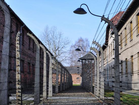 アウシュヴィッツ強制収容所の画像 p1_9