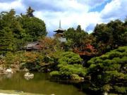 The grounds of Ninnaji Temple in Kyoto