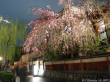 Historical Gion at night