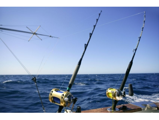 Start me up sport fishing shared private charter from for Sport fishing hawaii