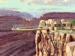Grand Canyon / スカイウォーク