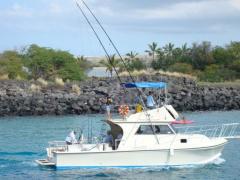 ハワイ島で海釣り! ボート乗り合い スポーツフィッシング by シーワイフII号