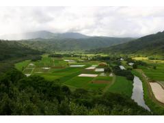 カウアイ島 ヘリコプター観光ツアー