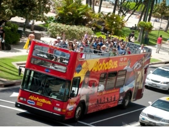 Downtown honolulu amp shopping shuttle on double decker bus oahu