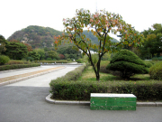 【1%の奇跡】インラインスケートデートした公園のベンチ