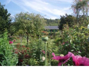 Giverny / モネの家