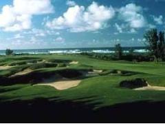 タートルベイ・リゾート・ゴルフコース 「アーノルド・パーマー」&「ジョージ・ファジオ」 送迎付きゴルフツアー
