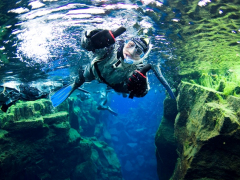 Snorkeling -Into the Blue 5 ellithor.com