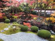 Senyuji Japanese garden