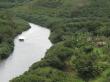 Wailua_River_Cruise