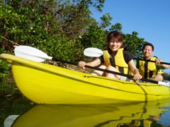Kayaking through a mangrove river