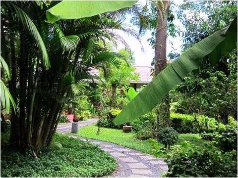 【スパ/エステ】カナシィア・スパ 「Cannaceae Spa」☆緑に囲まれたのどかな癒やしの老舗SPA<送迎付/空港お送りオプション有/プーケットタウン>