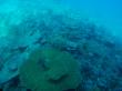 水中観光船風景2