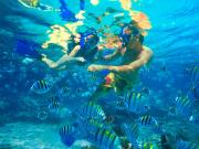 Snorkelers2