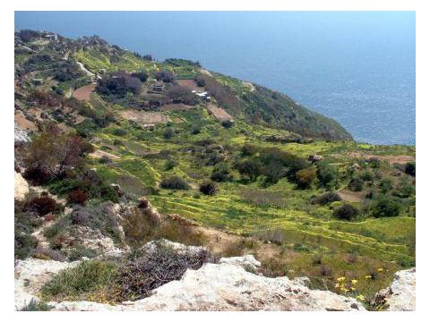 01Dingli Cliffs1