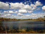 バーンズ湖
