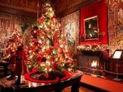 2-vaux-le-vicomte-christmas-decorations