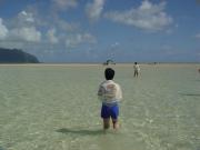 sandbar&snorkel  (5)