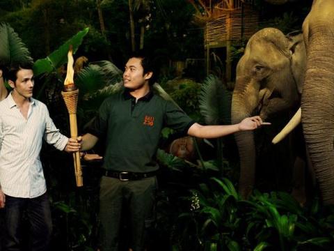 bali zoo night safari