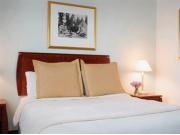 '11 Chateau_Nova_Hotel___Suites_Guestroom_jpg (Small)