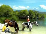 25.horse-back-riding_475_cw475_ch475_thumb