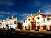 barrio-arenal