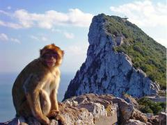 Gibraltar (5)