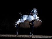 Jerez-cadiz-vino-caballos