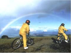 ハレアカラ山頂ダウンヒル(自転車) サンライズ&デイツアー