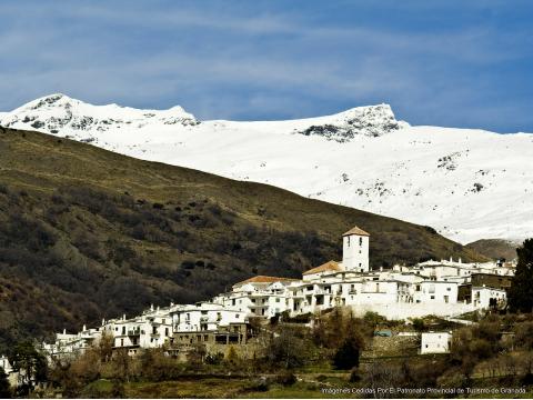 アルプハラ地方の白い村々を巡る 1日観光ツアー<昼食つき/グラナダ発>