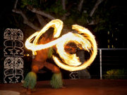 20140303044549_139584_TROPICS_FIRE_DANCER