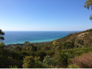 Mornington Peninsula Views (ANY TOUR)