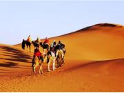 ラクダに乗って砂漠を散歩