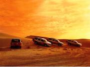 朝の砂漠を満喫!