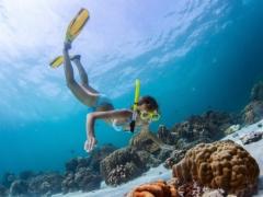 海の生き物と遊ぼう レンボンガン島でスノーケリング/ブルーシーズン・バリ