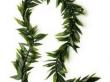 Maile-Style Ti Leaf Lei