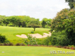bali_national_golf-07