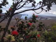 Volcano And Lehua