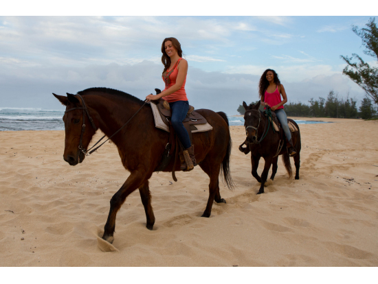 乗馬体験 ノースショアの海辺を散歩 ハワイ・ポロ・クラブ | ハワイ(オアフ島)の観光・オプショナルツアー専門 VELTRA(ベルトラ)乗馬体験 ノースショアの海辺を散歩 ハワイ・ポロ・クラブ | ハワイ(オアフ島)の観光・オプショナルツアー専門 VELTRA(ベルトラ)