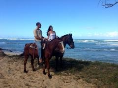 ハワイで乗馬! ノースショア海辺乗馬体験 ハワイ・ポロ・クラブ<ポロクラブ推薦>