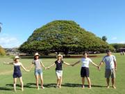 この木なんの木と参加者5人