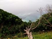 カムイワッカ川と海