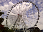 wheel of brisbane closeup