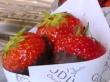 現地でしか食べられない!ゴディバ名物チョコイチゴ