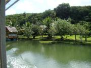 Adventure River Cruise - Turtle Tours Guam (3)