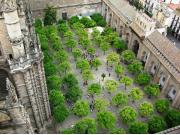 Seville_Courtyard